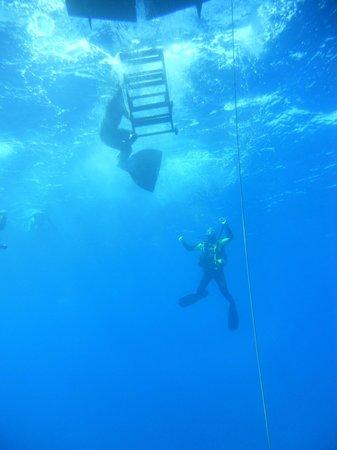 Argonauta Diving Club : Boat from below