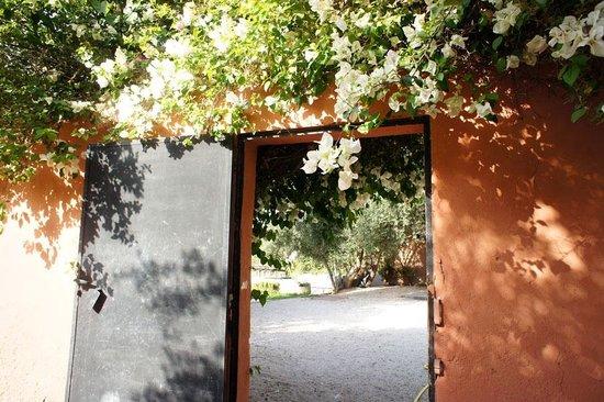 Villa Warhol : Entrance in the gardens to second villa