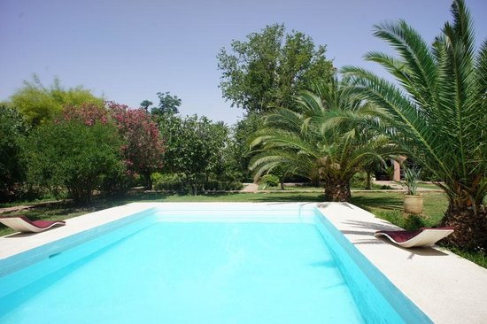 Villa Warhol : The main pool