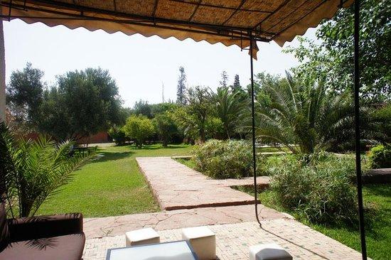 Villa Warhol : Terrace and gardens