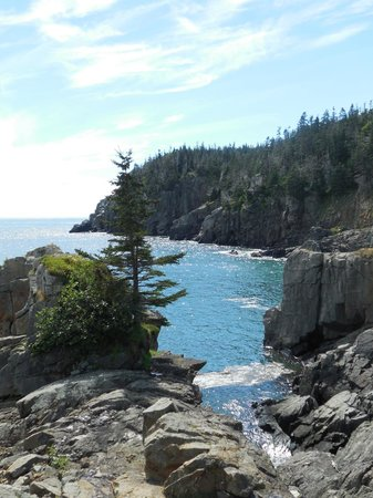 West Quoddy Head Light: One of the most beautiful hikes I've ever done.
