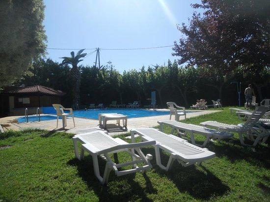 Pantheon Hotel: pool