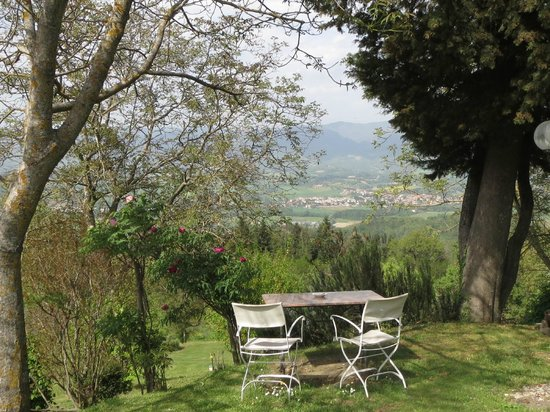 Villa Campestri Olive Oil Resort: Lunch with a view