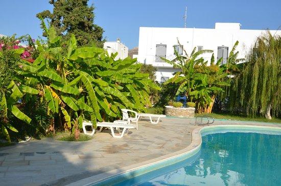 Casa di Roma: piscina