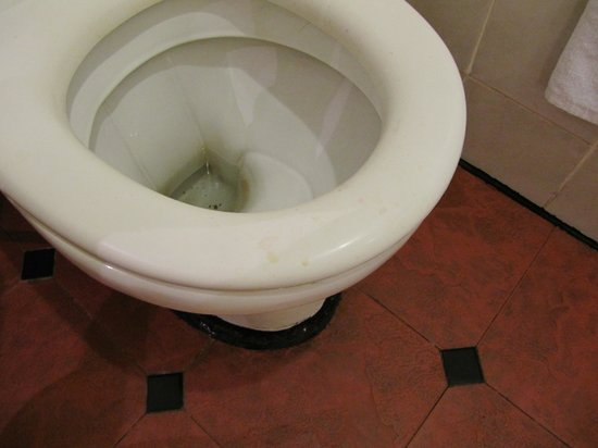 Spa Toilet Seat : Urine stains on toilet seat picture of holiday villa beach
