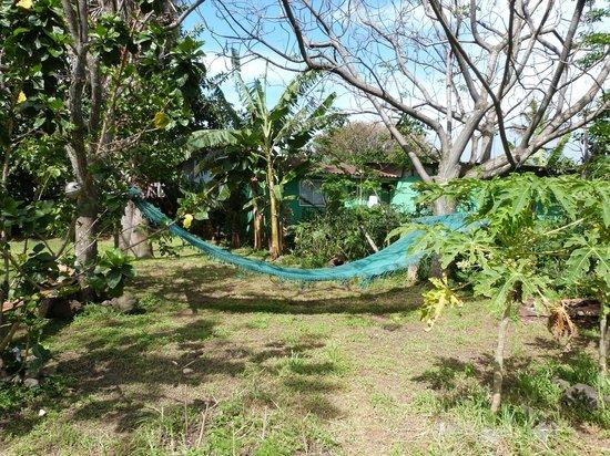 Cabanas Koro Nui: Una buena siesta