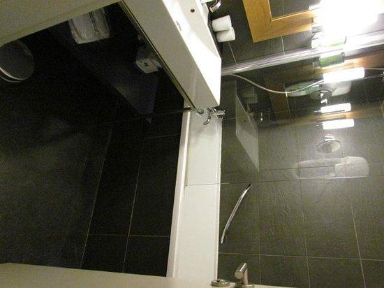 Hotel Les Aiglons Resort & Spa: salle de bain