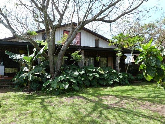 Cabanas Koro Nui: Nuestra casita en la Isla