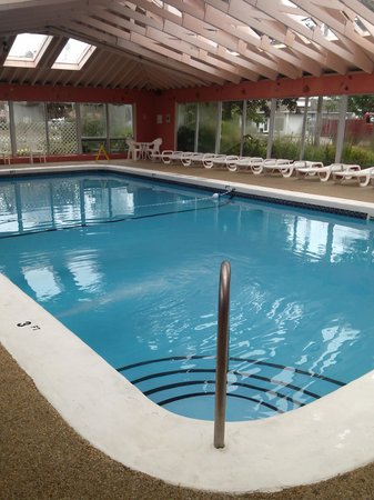 Town 'n Country Motor Lodge: The indoor saltwater pool