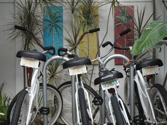 Hotel Lush Royale: You can rent one of these awesome bikes.
