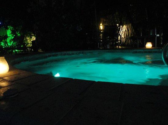 Hotel Lush Royale: Hot tub at night.