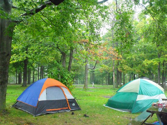 Darien Lake Amusment and Water Park Campground : Our campsite.