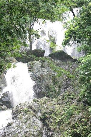 Argyle Waterfall: Chutes Argyle vues depuis le bassin