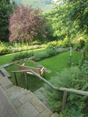 The Cottage in the Wood: Garden View