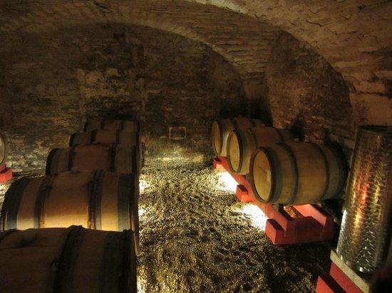 Caves - Chateau de Chamirey