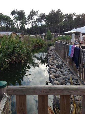 Fram Nature: autour de la piscine