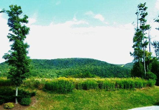 Vacation Village in the Berkshires: View out the rear from our balcony