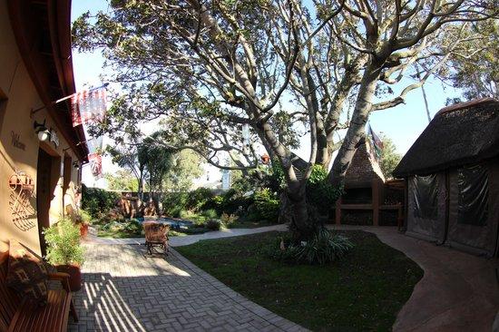 Treetops Guesthouse: Garten