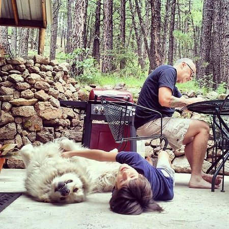 Elk Mountain Lodge: My son hanging with Cody, the Elk Mountain Lodge Dog.