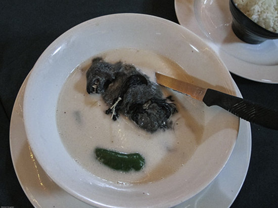 Penthouse Hotel Restaurant in Palau: Fruit Bat Soup. NOT!