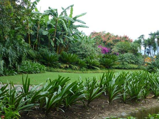 Quinta de las Flores: Gardens
