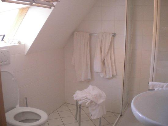 Hotel Haus Appelberg: Bathroom