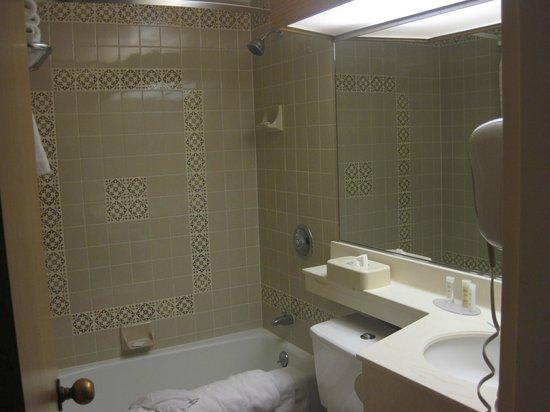 Howard Johnson Anaheim Hotel and Water Playground: Kids Suite - Kids Bathroom
