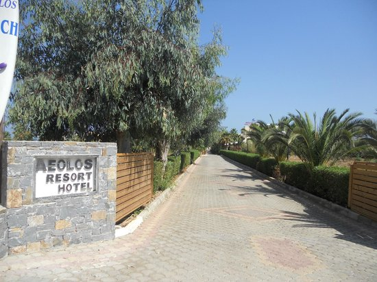 Aeolos Beach Resort Hotel: The hotels well kepts gardens