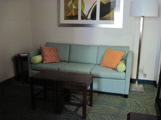 SpringHill Suites Boise: Sofa