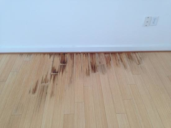 Inn at Serenbe: more water damage in loft 13 (this was probably a 4 foot long area damaged)
