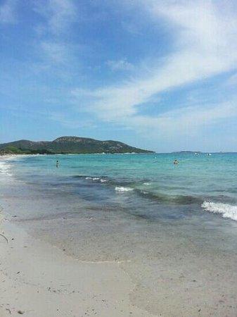 Restaurant Playa Baggia : vue du bain de soleil