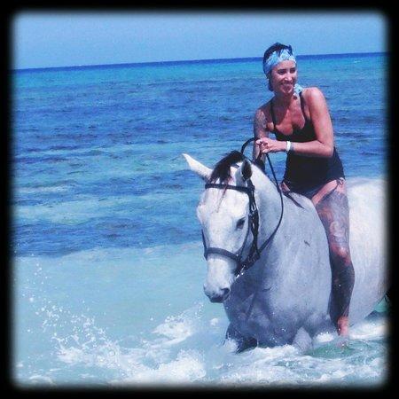 Half Moon Equestrian Center: Me & Jonas !