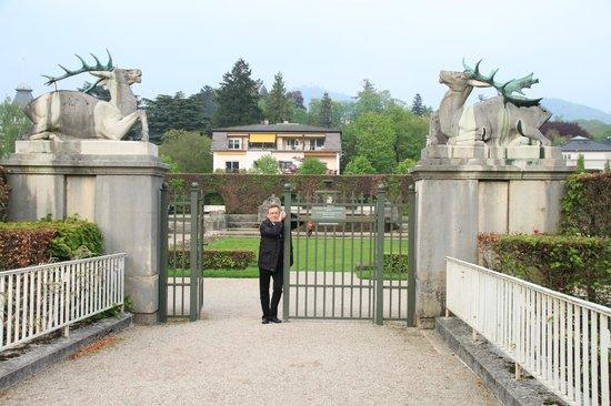 CitySeg : schöne Parkanlage in Baden Baden