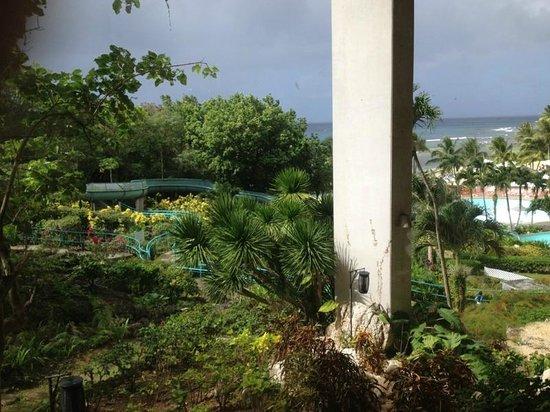 Hotel Nikko Guam: Территория отеля
