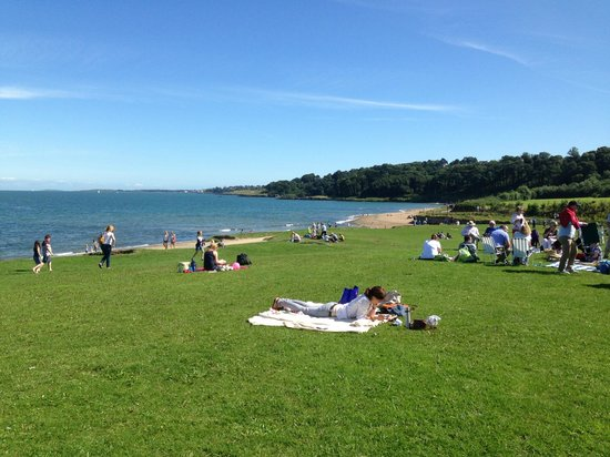 Crawfordsburn Country Park: Picnic in the park