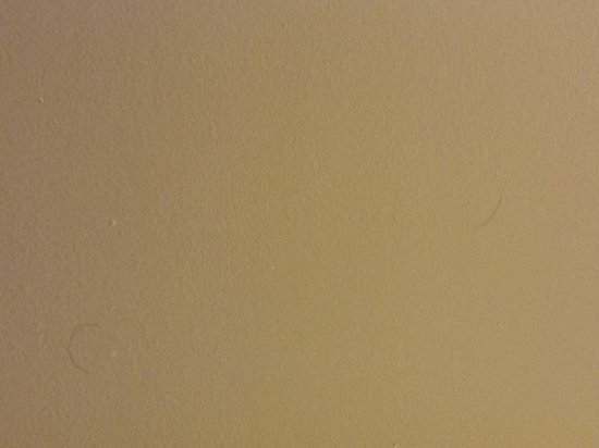 Hilton Garden Inn Atlanta Downtown: Hair on the Bathroom Ceiling