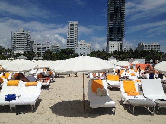 Shore Club South Beach Hotel: Beach
