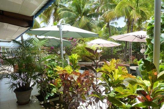 Nid tropical : extérieur
