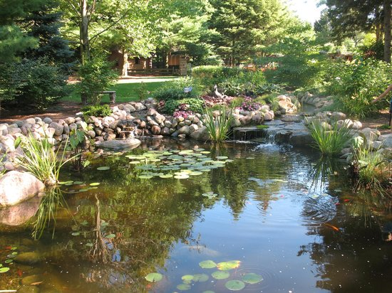 Bookworm Gardens: Koi pond
