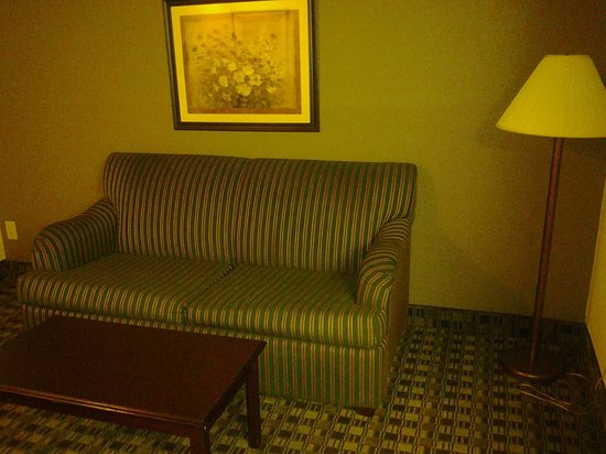 Ramada Canton/Hall of Fame: Living Area