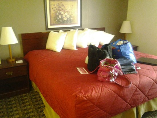 Ramada Canton/Hall of Fame: Bedroom