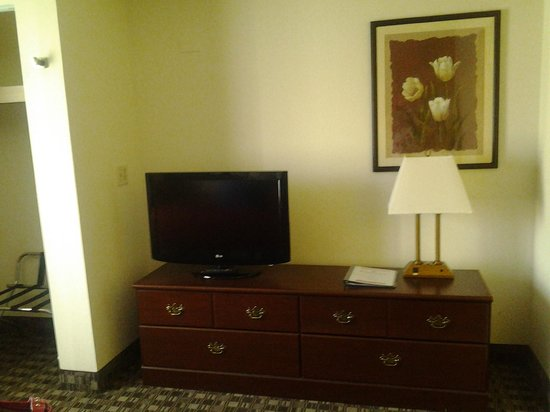 Ramada Canton/Hall of Fame: Bedroom TV