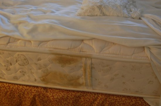 Amelia Hotel at the Beach: filthy matress, no matress protection covers