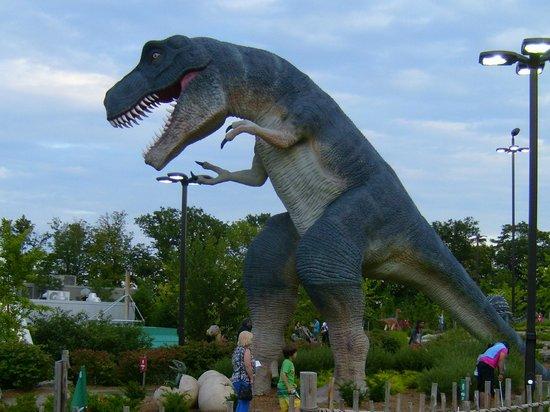 Clifton Hill: T Rex
