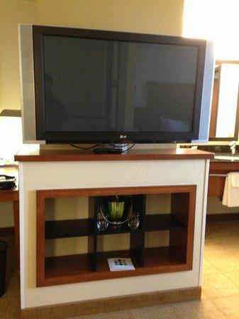 Hyatt Place Secaucus/Meadowlands: Nice, large TV