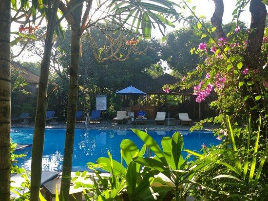 Bumi Ayu Bungalows : pool