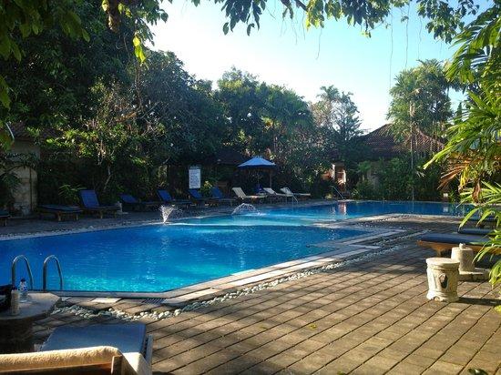 Bumi Ayu Bungalows: pool