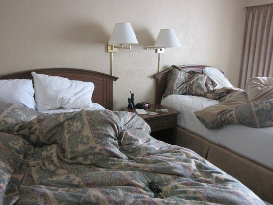 Crest Hotel: Beds