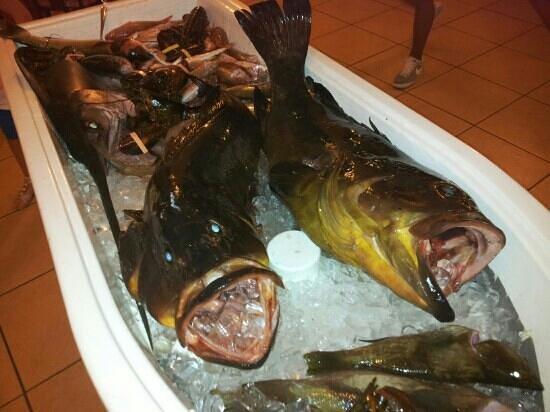 L'Ancora: pescato
