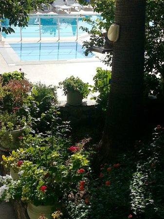 Hotel Naturella: Pool /trädgård